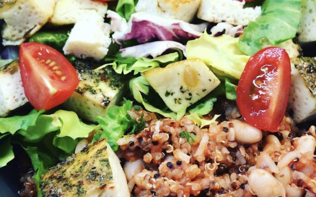 Welcome to the Jungle – Wenn es zu viele Tipps für die Ernährung gibt